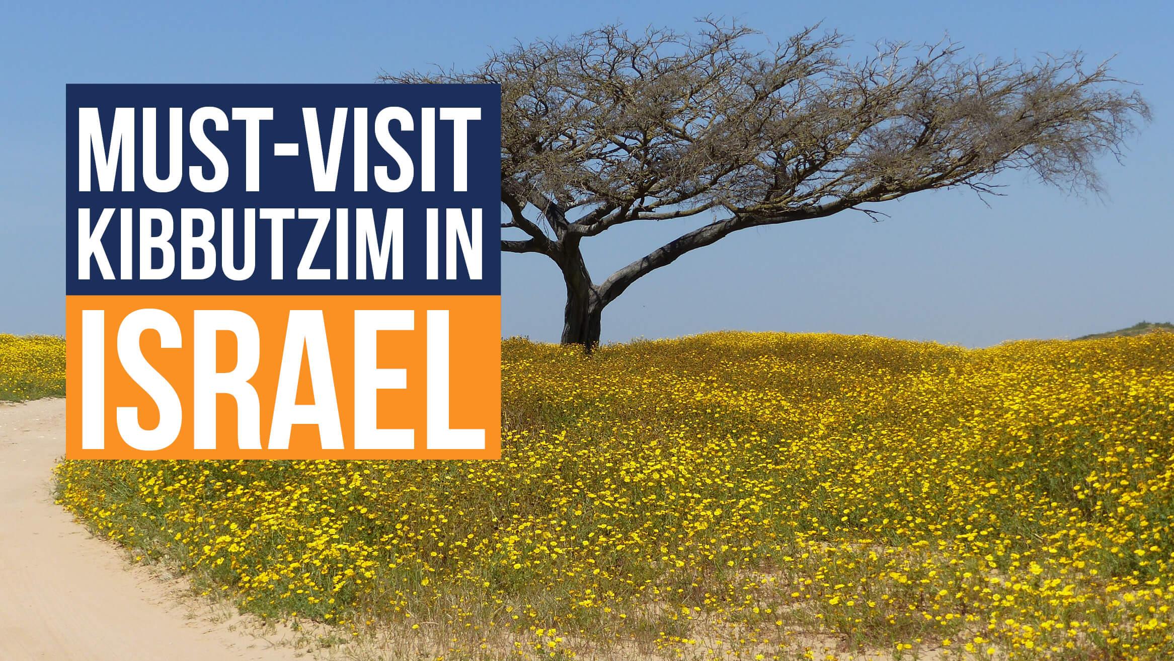 Must-Visit Kibbutzim in Israel header