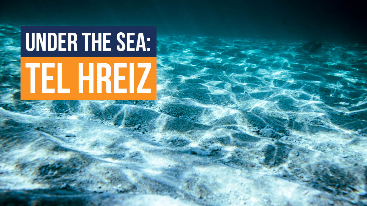 Under the Sea Tel Hreiz